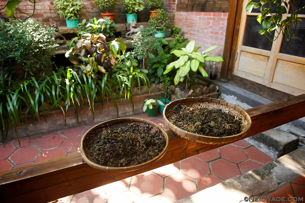 Tea leaves dry in a traditional drying basket in the Chen Wey Tea Room, on Dihua Street.
