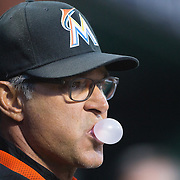 NEW YORK, NEW YORK - APRIL 12: Manager Don Mattingly, Miami Marlins, in the dugout during the Miami Marlins Vs New York Mets MLB regular season ball game at Citi Field on April 12, 2016 in New York City. (Photo by Tim Clayton/Corbis via Getty Images)