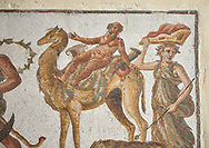 Picture of a Roman mosaics design depicting Silenus riding a camel, from the ancient Roman city of Thysdrus. 2nd century AD, House of the Dionysus Proccession. El Djem Archaeological Museum, El Djem, Tunisia. .<br /> <br /> If you prefer to buy from our ALAMY PHOTO LIBRARY  Collection visit : https://www.alamy.com/portfolio/paul-williams-funkystock/roman-mosaic.html  . Type -   El Djem   - into the LOWER SEARCH WITHIN GALLERY box. Refine search by adding background colour, place, museum etc<br /> <br /> Visit our ROMAN MOSAIC PHOTO COLLECTIONS for more photos to download  as wall art prints https://funkystock.photoshelter.com/gallery-collection/Roman-Mosaics-Art-Pictures-Images/C0000LcfNel7FpLI