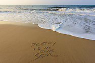 Poetry Is In Our Soul, Beach, Water Mill, NY