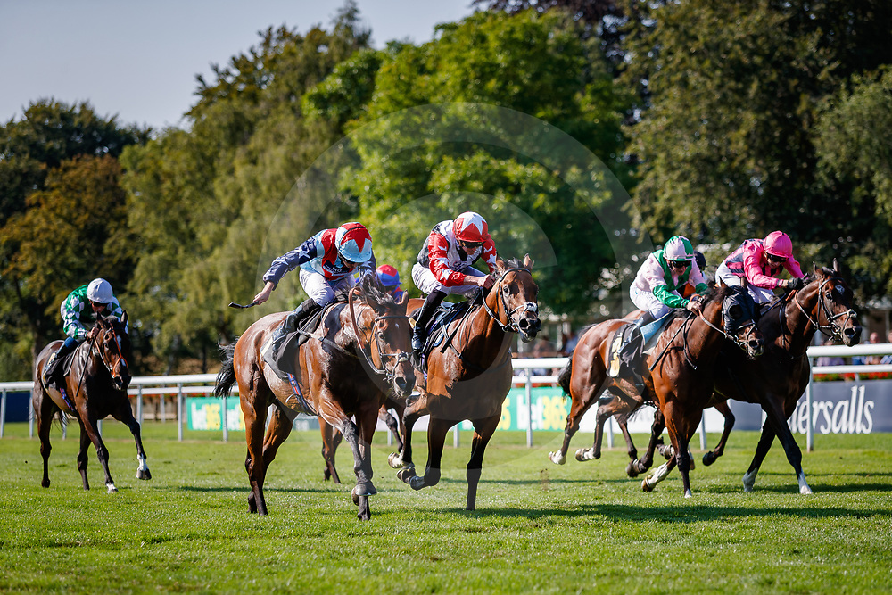 Ripp Orf (Ryan Moore) wins The Saeed Suhail Saeed Handicap Stakes  in Newmarket, 13/07/2018, photo: Zuzanna Lupa