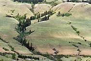 Farmland on Vernon Mountain in Coldstream, British Columbia, Canada