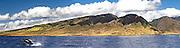 Whale,famous hawaii,<br /> fine art hawaii,<br /> fine art photography,<br /> gallery hawaii,<br /> hawaii beach,<br /> hawaii beaches,<br /> hawaii island,<br /> hawaii photo,<br /> hawaii photographer,<br /> hawaii tours,<br /> hi hawaii,<br /> images hawaii,<br /> landscape hawaii,<br /> north shore hawaii,<br /> ohau hawaii,<br /> photographer,<br /> photographers,<br /> photographs hawaii,<br /> photography,<br /> photography art,<br /> photography hawaii,<br /> photography in hawaii,<br /> photos hawaii,<br /> pictures hawaii,<br /> prints hawaii,<br /> professional photography,<br /> studio hawaii,<br /> studios hawaii,<br /> surf hawaii,