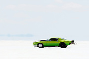The best cars-people-atmosphere-photos of 2009 Bonneville Speed Week-  Griffith Racing's 1971 Pontiac Firebird driven by Chuck Preimsberg of Firebaugh, CA. makes a run at the Bonneville Speed Way. August 9, 2009.  Photo by Colin E. Braley