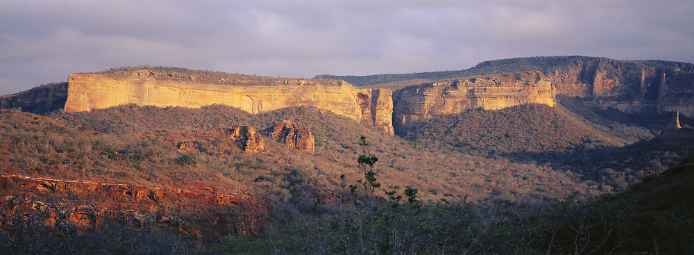 Sand Stone Cliffs<br />nesting sites of Lear's Macaw (very rare)<br />Caatinga Habitat.  Bahia State, NE BRAZIL.  South America<br />Threatened Habitat