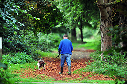 © Licensed to London News Pictures. 08/09/2018<br /> SIDCUP, UK.<br /> A dog walker and Autumn leaves on the ground.<br /> Footscray Meadows in Sidcup showing signs of Autumn colour.<br /> Photo credit: Grant Falvey/LNP