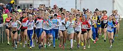 08-12-2013 ATHLETICS: SPAR EC CROSS COUNTRY: BELGRADE<br /> Start junior women 4 km / Links winnares Emilia Gorecka GBR en Marusa Mismas SLO in het midden<br /> ©2013-WWW.FOTOHOOGENDOORN.NL
