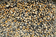 Close up of stack of firewood. Rascane, Croatia