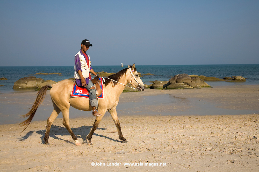 Hua Hin Beach Horse - The seaside in Hua Hin has always been a popular retreat for residents of Bangkok to get a breath of fresh ocean air.  It is also popular for loading up on fresh seafood, pony rides on the beach or simply beachcoming by the wharf. The custom of roaming the beach on horseback is less and less popular these days because of the waste dropped onto the beach by horses.