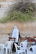 Israel, Jerusalem, Old City Wailing Wall