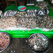 Different varieits of shrimp (prawns) for sale at the fish and flower market in Mandalay, Myanmar (Burma).