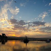 Harbor Morning, Dana Point California