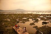 Fishing, Ajijic, Lake Chapala, Jalisco, Mexico