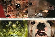 Publication: STERN (Germany), Nr.14, 27.03.2008..Photography by Heidi & Hans-Jürgen Koch/animal-affairs.com