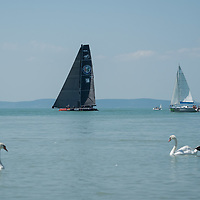 Participants compete at the Blue Ribbon Regatta race along the 160 km course around Lake Balaton near Balatonfured, Hungary on July 30, 2020. ATTILA VOLGYI