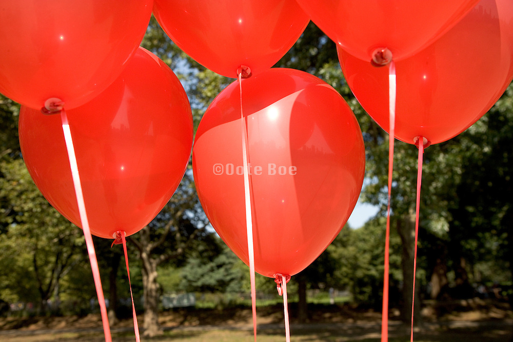 group of red helium filled balloons
