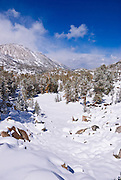 Little Lakes Valley after a winter storm, John Muir Wilderness, Sierra Nevada Mountains, California