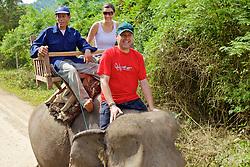 David & Montserrat Riding Elephant