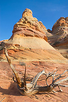 South Coyote Buttes, Vermilion Cliffs Wilderness Utah