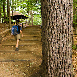 A man begins his hike in New Hampshire's Monadnock State Park.