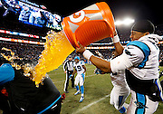 CHARLOTTE, NC - JAN 24:  Quarterback Cam Newton #1 of the Carolina Panthers dumps Gatorade on head coach Ron Rivera during the NFC Championship game against the Arizona Cardinals at Bank of America Stadium on January 24, 2016 in Charlotte, North Carolina.