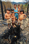 BURNT HOME FOREST FIRES, Amazon, near Boavista, northern Brazil, South America. A family in the burnt out framework of their home destroyed by forest fire. Macuxi traditional indigenous people. Ecological biosphere and fragile ecosystem where flora and fauna, and native lifestyles are threatened by progress and development. The rainforest is home to many plants and animals who are endangered or facing extinction. This region is home to indigenous primitive and tribal peoples including the Yanomami and Macuxi.
