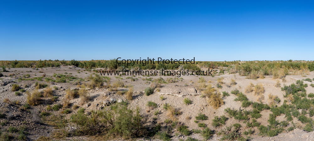 Panoramic view of desert or scrub with blue sky.