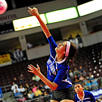 111612  Adron Gardner<br /> <br /> Laguna Acoma Hawk Aubree Carr (11) spikes to the Hatch Valley Bears in the state volleyball quarterfinals at the Santa Ana Star Center in Rio Rancho Friday.