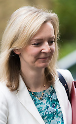 Downing Street, London, November 17th 2015. Food, Agriculture and environment Secretary Liz Truss leaves 10 Downing Street following the weekly cabinet meeting.