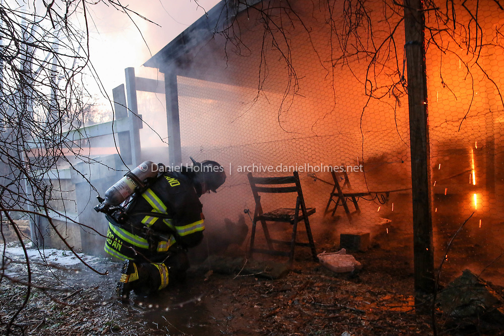 (1/21/18, HOLLISTON, MA) Ashland firefighter Mike Brogan cuts a wire fence to free some chickens during a barn fire that broke out early Sunday morning at 755 Concord St. on the Ashland/Holliston town line. [Daily News and Wicked Local Photo/Dan Holmes]