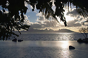 View of Moorea at sunset with tree branches from the Tahiti International Hotel, Tahiti, Society Islands, French Polynesia