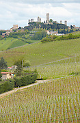 View over vineyards and San Gimigniano in Tuscany