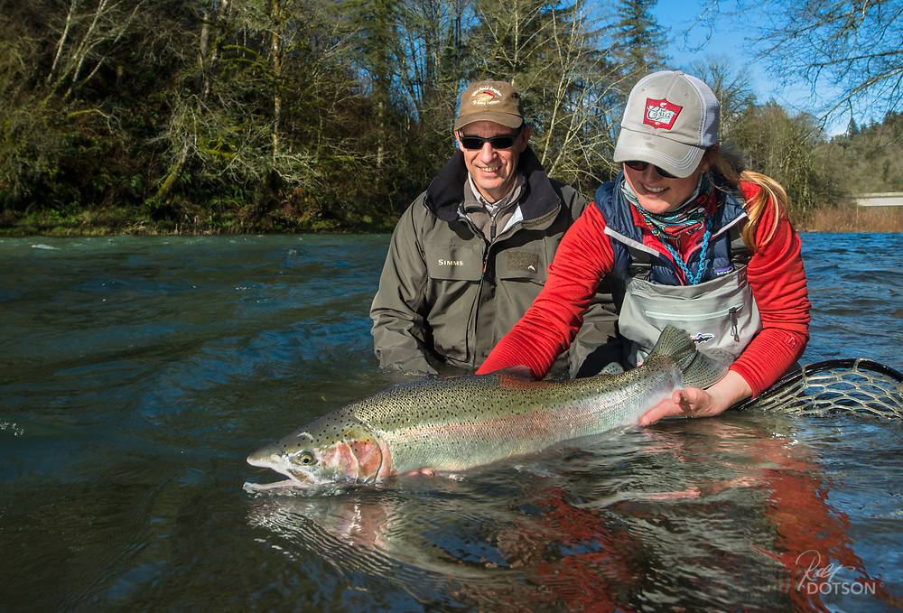"Magnificant 35"" wild steelhead. A beast and a looker by any measure."