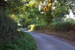 Countryside lane, Waveney Valley, Suffolk UK