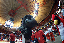10 January 2016:  Reggie and the Battle Bird during a College NIT (National Invitational Tournament) mens basketball game between the UC Irvine Anteaters and Illinois State Redbirds in  Redbird Arena, Normal IL