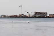 Trieste, il vecchio porto