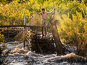 19 JUNE 2016 - DON KHONE, CHAMPASAK, LAOS: A fisherman shakes out his nets and fish traps at Khon Pa Soi Waterfalls, on the east side of Don Khon. It's the smaller of the two waterfalls in Don Khon. Fishermen have constructed an elaborate system of rope bridges over the falls they use to get to the fish traps they set. Fishermen in the area are contending with lower yields and smaller fish, threatening their way of life. The Mekong River is one of the most biodiverse and productive rivers on Earth. It is a global hotspot for freshwater fishes: over 1,000 species have been recorded there, second only to the Amazon. The Mekong River is also the most productive inland fishery in the world. The total harvest of fish from the Mekong is approximately 2.5 million metric tons per year. By some estimates the harvest in the Tonle Sap (in Cambodia) had doubled from 1940 to 1995, but the number of people fishing the in the lake has quadrupled, so the harvest per person is cut in half. There is evidence of over fishing in the Mekong - populations of large fish have shrunk and fishermen are bringing in smaller and smaller fish.     PHOTO BY JACK KURTZ