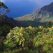 Waimea Canyon is also referred to as the Grand Canyon of the Pacific. Kaua'i, Hawaii