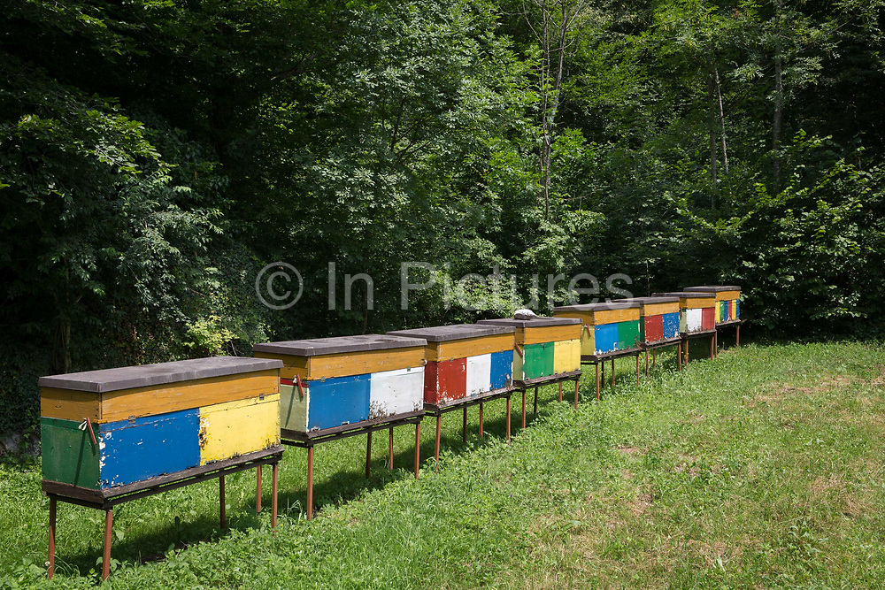 Traditional multicoloured and portable Slovenian bee hives on the edge of a meadow in rural Slovenia, on 21st June 2018, in Kobarid, Slovenia.
