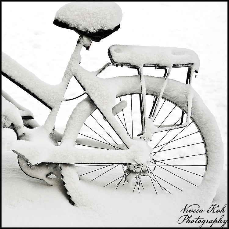 Bicycle buried in snow