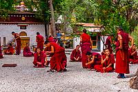 Monks debating Buddhist doctrines, Sera Monastery, Lhasa, Tibet (Xizang, China).