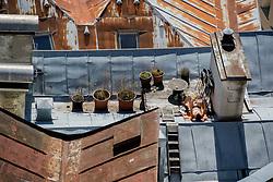 20.03.2014, Salzburg, AUT, Stadtansicht Salzburg, im Bild Eine Frau geniesst das sommerliche Wetter ueber den Daechern der Altstadt von Salzburg // Cityscape of Salzburg, Austria on 2014/03/20. EXPA Pictures © 2014, PhotoCredit: EXPA/ Freshfocus/ Andy Mueller<br /> <br /> *****ATTENTION - for AUT, SLO, CRO, SRB, BIH, MAZ only*****