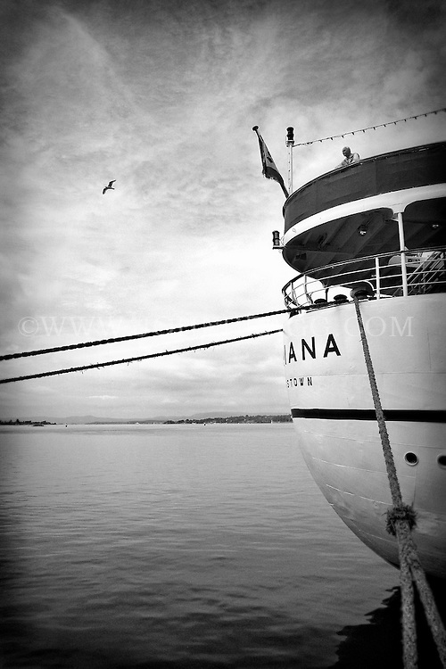 Black and white photo of a man standing on the back of a ship watching a bird flying across the sea in Oslo, Norway.
