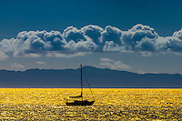 Sailboats (with Channel Islands in background), Santa Barbara, California USA.