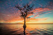 Florida Healing Waters