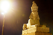 Egyptian Sphinx at night. St. Petersburg, Russia