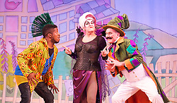 Mother Goose <br /> at the Hackney Empire, London, Great Britain <br /> press photocall<br /> 20th November 2014 <br /> <br /> <br /> Darren Hart as Frightening Freddie<br /> <br /> Susie McKenna as Vanity <br /> <br /> Tony Timberlake as Baron Barmey<br /> <br /> <br />  <br /> <br /> <br /> Photograph by Elliott Franks <br /> Image licensed to Elliott Franks Photography Services