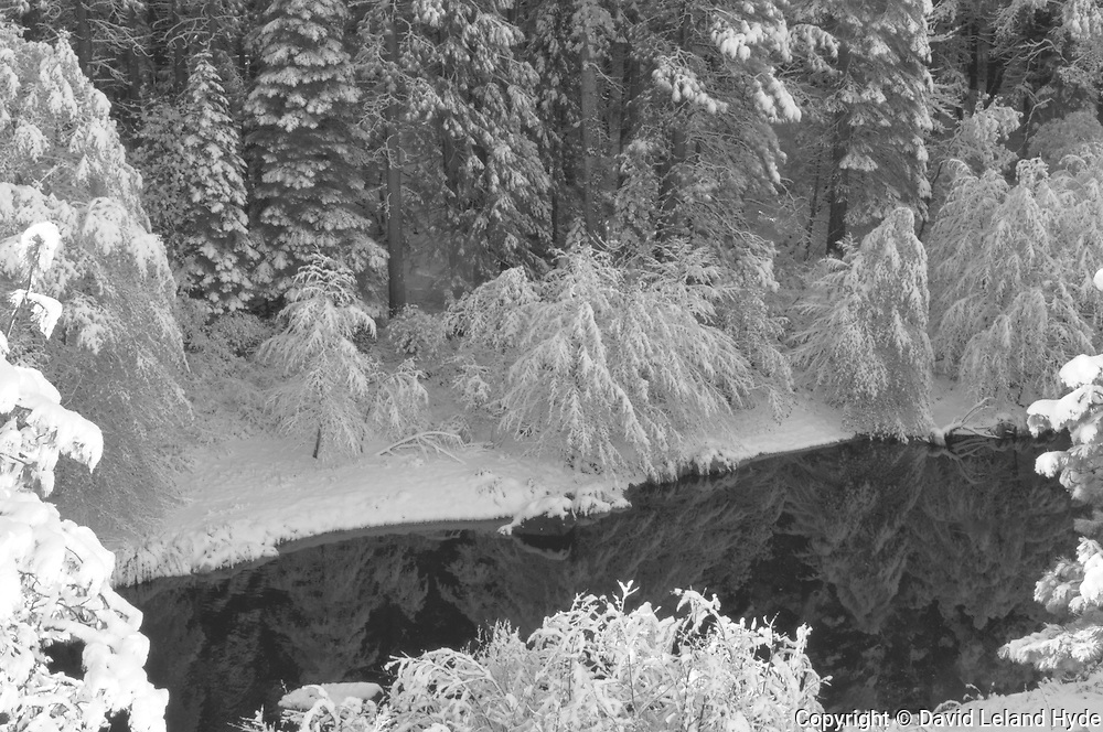 Indian Creek and Forest in Snow From Above, Reflecting Pool, Sierra Nevada Mountains, California Rivers, winter scenes, black and white photography, black and white art
