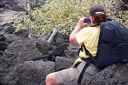 Kristina Timmerman Photographing Marine Iguana, San Cristóbal
