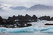 Rocks and icebergs on the coast in Hornsund, Svalbard. Gasbreen and surrounding mountains are visible through the mist.